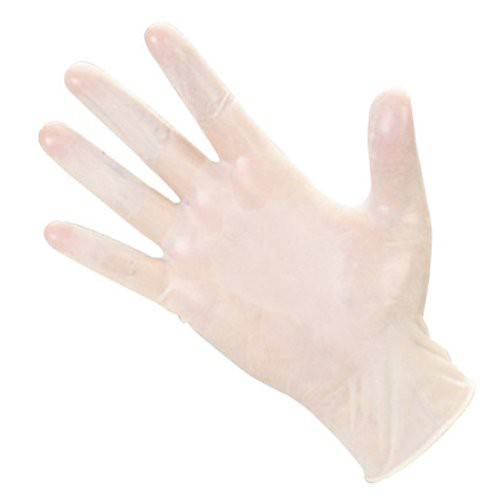 Select Value LARGE Powder Free Vinyl Gloves 100 ct